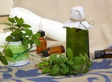 Huile de menthe poivrée Image stock