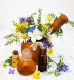 Huile de nature avec des wildflowers Photographie stock libre de droits