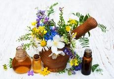 Huile de nature avec des wildflowers Image libre de droits