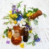 Huile de nature avec des wildflowers Photographie stock