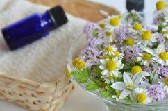 Huile essentielle avec la fleur de fines herbes photo libre de droits