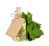 Huile essentielle de menthe poivrée Photo stock