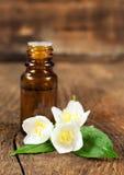 Huile essentielle et jasmin de floraison Photo libre de droits
