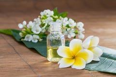 Huile essentielle, fleur, sur la feuille verte, fond de tache floue, PS de santé Images stock