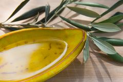 Huile et herbes d'olive Images libres de droits