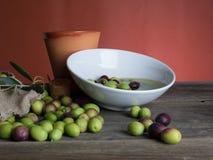Huile et olives d'olive Photo libre de droits