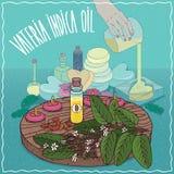 Huile indica de Vateria utilisée pour la fabrication de savon illustration libre de droits