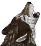 Huilende wolf Royalty-vrije Stock Afbeelding