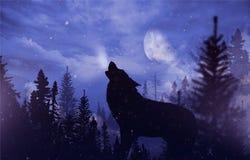 Huilende Wolf in Wildernis Royalty-vrije Stock Foto's
