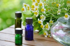 Huiles d'Aromatherapy avec la camomille Image stock