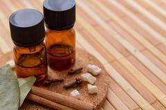 Huiles essentielles avec des épices pour l'aromatherapy Images stock