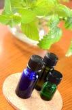 Huiles essentielles avec des herbes Photographie stock