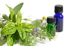 Huiles essentielles avec des herbes Photographie stock libre de droits