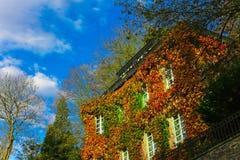 Huis in de Herfst Royalty-vrije Stock Foto's