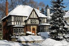 Huis in de winter met pijnboombomen Stock Afbeelding