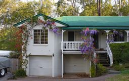 Huis dichtbij Brisbane Australië met wisteria erachter het groeien over de treden en de portiek en lange gombomen Royalty-vrije Stock Afbeelding