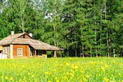 Huis dichtbij het bos Royalty-vrije Stock Foto's