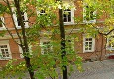 Huis door bladeren royalty-vrije stock foto
