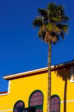 Huis en een palm Royalty-vrije Stock Foto's