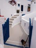 Huis en Huisdierenhond in Santorini, Griekenland stock foto
