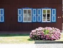 Huis en mooie hydrangea hortensiabloemen Royalty-vrije Stock Afbeelding