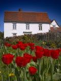 Huis en Tulpen Royalty-vrije Stock Afbeelding