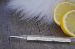 Huis grippe remedie stock afbeelding