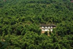 Huis in het bamboebosje Royalty-vrije Stock Afbeelding