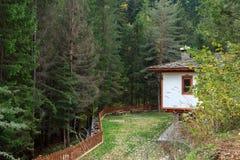 Huis in het bos Stock Afbeelding