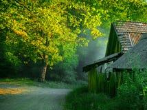Huis in het hout Royalty-vrije Stock Afbeeldingen