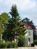 Huis in het hout Royalty-vrije Stock Foto's