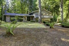 Huis in het hout De zomertijd in de staat van Washington Royalty-vrije Stock Afbeeldingen