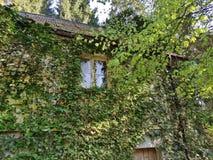 Huis in het hout stock fotografie