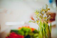 Huis in kleurrijke brieven en de lentebloemen Stock Foto's