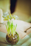 Huis in kleurrijke brieven en de lentebloemen Stock Foto