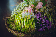 Huis in kleurrijke brieven en de lentebloemen Stock Afbeelding