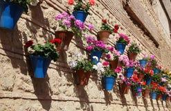 Huis met bloempotten wordt verfraaid die Stock Afbeeldingen