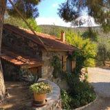 Huis met een tuin Royalty-vrije Stock Afbeelding