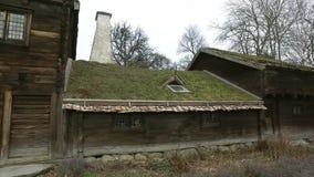 Huis met grasdak stock videobeelden