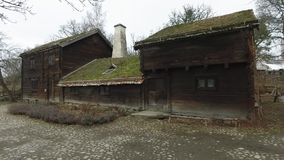 Huis met grasdak stock footage