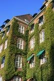 Huis met Klimop Stock Afbeeldingen