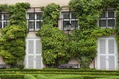 Huis met Klimop Royalty-vrije Stock Afbeeldingen