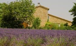 Huis met lavendelgebied Stock Fotografie
