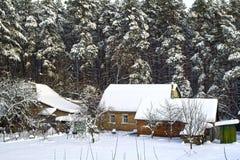 Huis met schuur op de pijnboomachtergrond Stock Foto's
