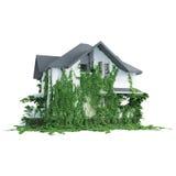 Huis met wilde installaties stock illustratie