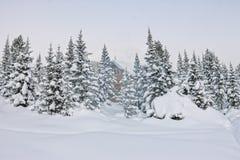 Huis onder sneeuw in de winter houten chalet onder nette bomen in royalty-vrije stock foto