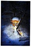 Huis op een boomeekhoorns stock afbeelding