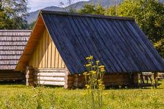 Huis op een weide Stock Foto