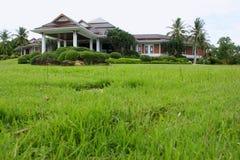 Huis op groen gebied Stock Afbeelding