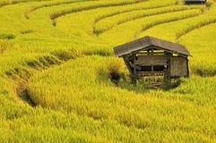 Huis op krommelandbouwbedrijf Stock Fotografie